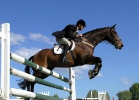 GPA Jump Festival, jumping international